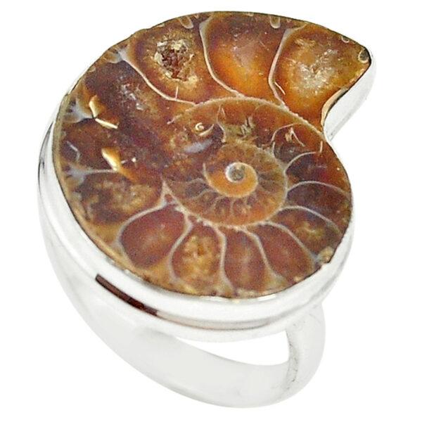 Ammonite Fossil Ring