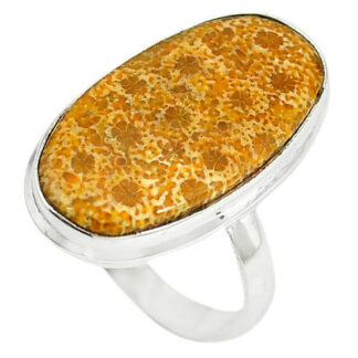 Fossil Coral Stone Ring