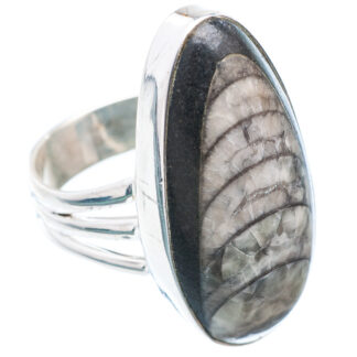 Orthoceras Fossil Ring