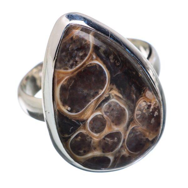 Turritella Ring