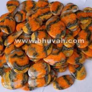 Bumble Bee Jasper Price Per Kg