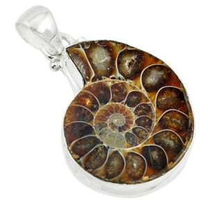 Natural Ammonite Pendant