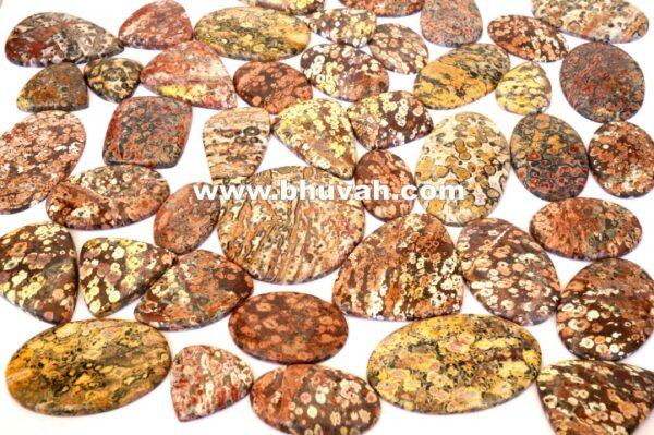 leopard skin jasper price per kg