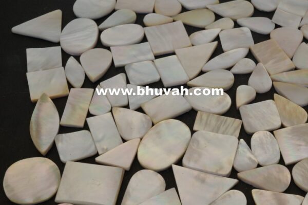 mother of pearl price per kg