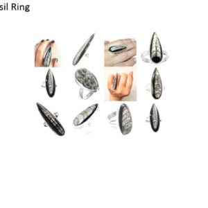 orthoceras fossil stone natural gemstone 925 sterling silver ring